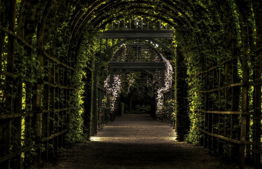 garden-path-way-park-large