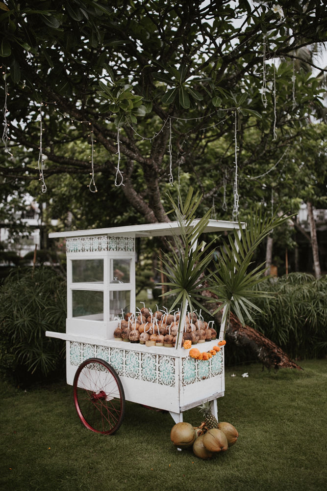 coconut cart- image 6